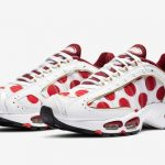 "Nike Air Max Tailwind 4 ""Nippon Pack"""